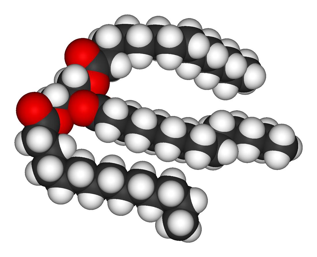 מולקולת שומן
